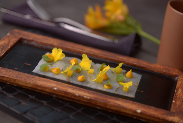 CARPACCIO CAMAR+âO TEXTURA DE MANGA FLORES Home - Carpaccio de camarão com mangas e flores