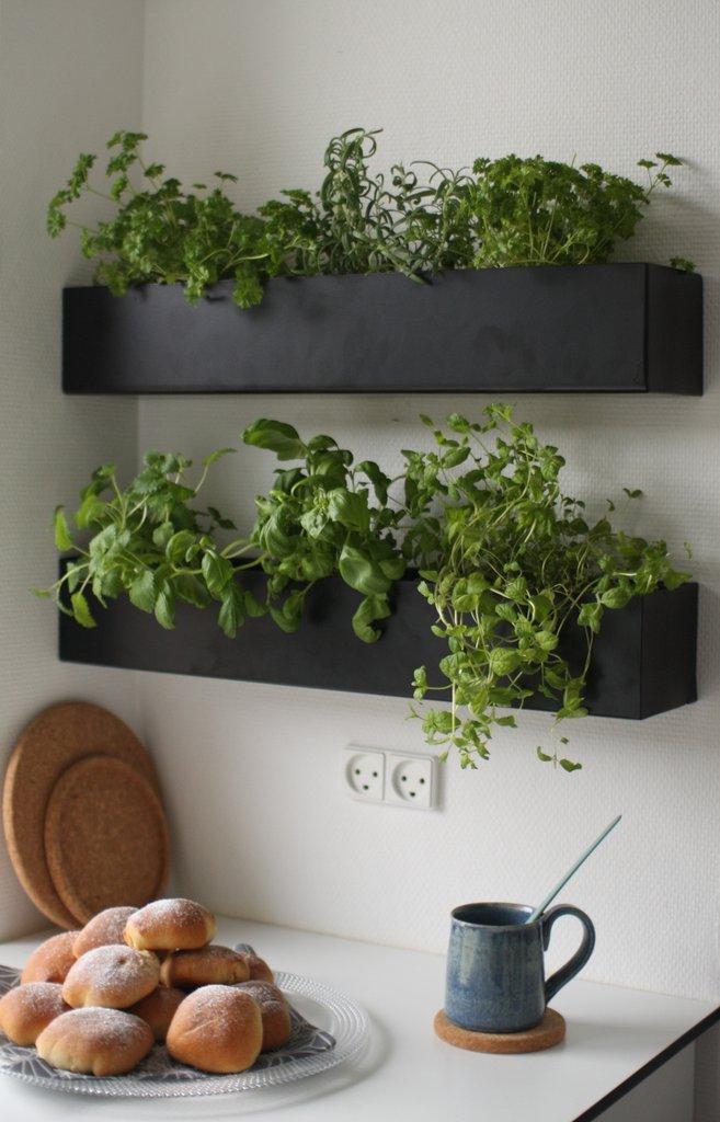Horta em casa 6 - Horta em casa –boas ideias com toque especial na decoração