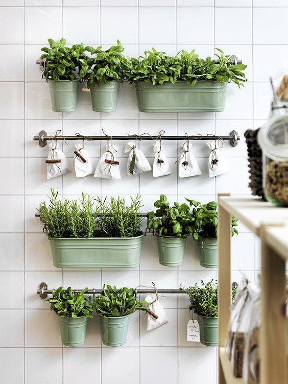 Horta em casa - Horta em casa –boas ideias com toque especial na decoração