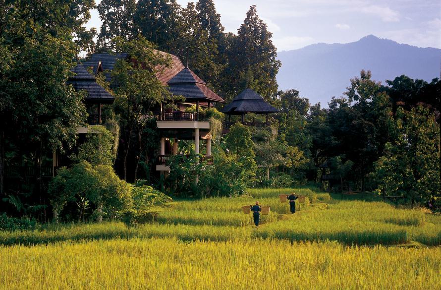 Four Seasons Descobertas Culinárias  Tailandia - Four Seasons Descobertas Culinárias