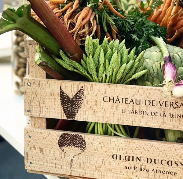 Dieta a Base de Plantas  Alain Ducasse - Dieta à Base de Plantas