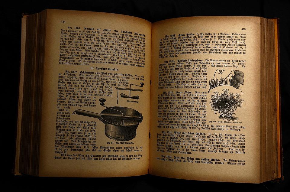 O futuro das receitas  livro antigo - O futuro das receitas