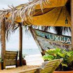 Organic Festival Uxua 150x150 - >Os restaurantes também estão floridos