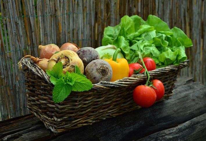 Receitas de Verão  vegetais - Receitas para o verão