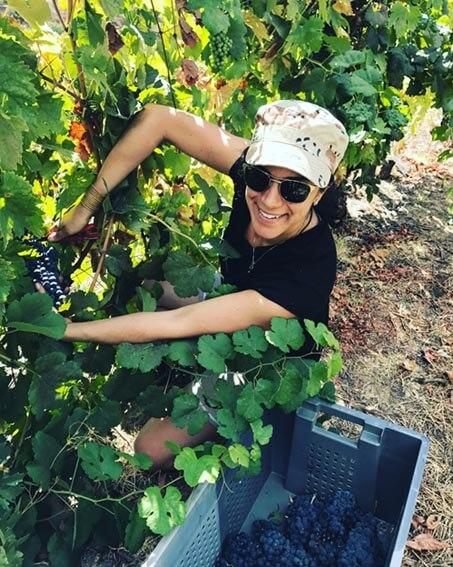 Maria Emilia Atallah - Vinhos com comida vegetariana ou vegana