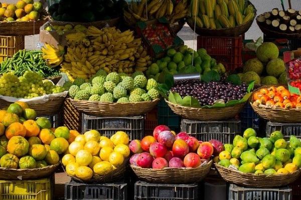 Culinaria Vegana frutas - Culinária Vegana