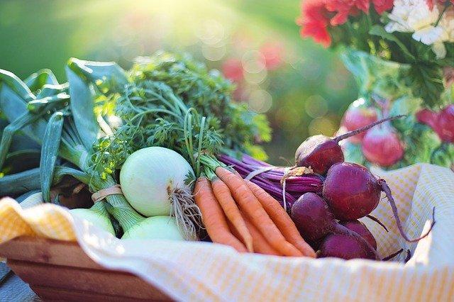 Semana da Culinaria Vegana - Culinária Vegana