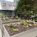 Tujuina Restaurante 1 150x150 - Fábrica de Dengo