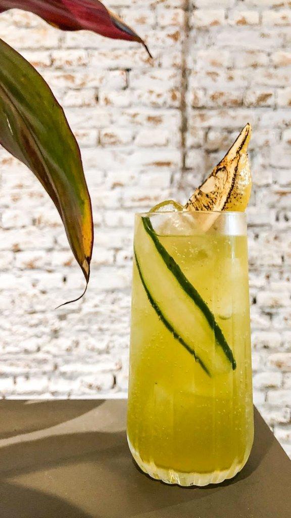 Casa Rios Mix de limoes e ginger ale com cordial de pepino 576x1024 - Casa Rios